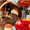 Сказочная осень в КактусПати